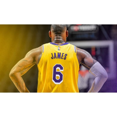 lebron james number 6 lakers jersey